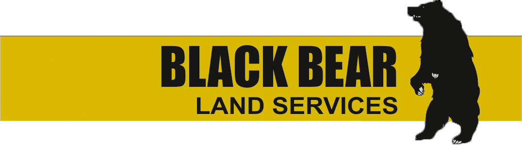 black bear land services